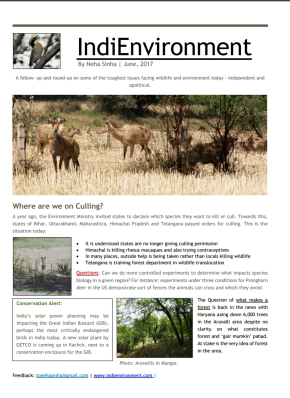 IndiEnvironment- June 2017 Issue