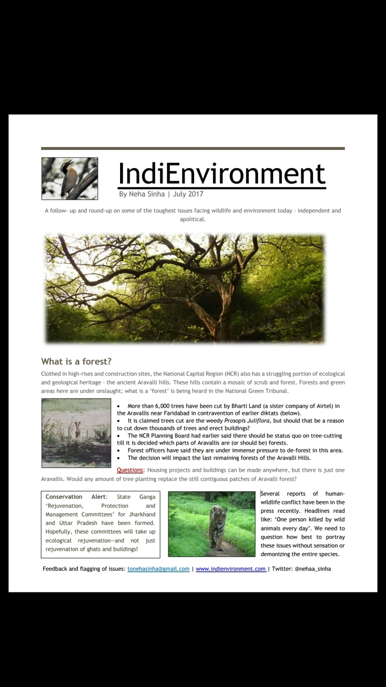 IndiEnvironment July 2017